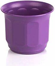 Kimmel Prosperplast Cache-Pot Violet Ø 9 cm