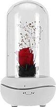 Lampe de Parfum à LED, Diffuseur D'arôme