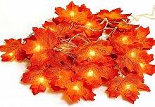 LangRay Guirlande lumineuse en forme de feuille