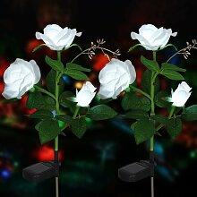 LangRay Lumières de fleur solaire Rose