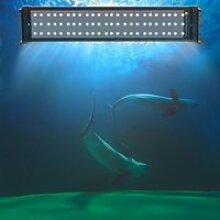LED Éclairage d'Aquarium   Lampe Pour