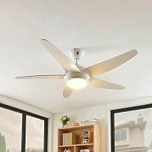 LED Ventilateur de plafond avec lampe