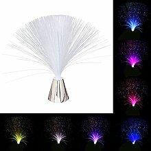 LEDMOMO Lumière de fibre optique changeante de