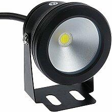 LemonBest® 10W 12V IP65 Projecteur LED étanche