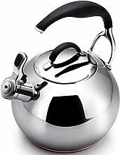 LIPENLI Bouilloire bouilloire à gaz en acier