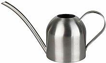 LouisaYork Mini arrosoir en acier inoxydable