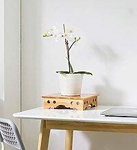 LXDZXY Stands de Plantes, Support de Fleur de