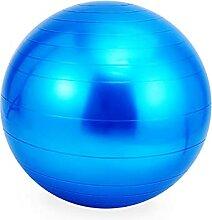 LYQCZ Chaise Ballon Housse de Ballon