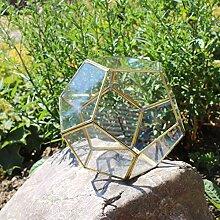 Mitienda Terrarium géométrique en Verre Boule