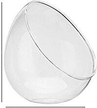 Moderne Mini Boule Claire Paysage Plante Vase en