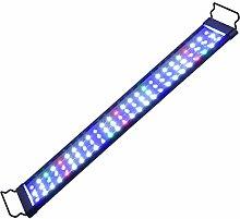 NANANA Rampe LED Étanche pour Aquarium d'eau