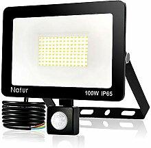 Natur 100W LED Projecteur Détecteur de Mouvements