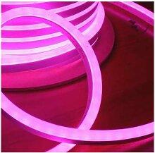 Néon LED Flexible lumineux | Rose - 50m