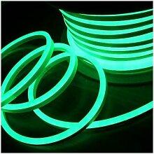 Néon LED Flexible lumineux | Vert - 50m