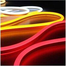Néon LED Flexible RGB Lumineux 5m