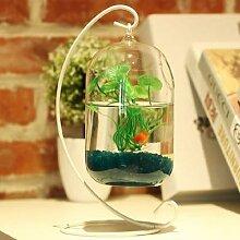 O.RoseLif – Vase en verre de grande taille,