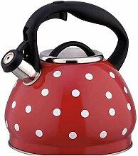 OH Bouilloire 3L Gaz Teapot En Acier Inoxydable