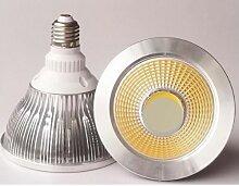 Ohm-easy Led Lighting - Projecteur LED PAR38 E27