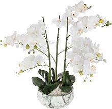 Orchidée artificielle, pot marbré H65 cm