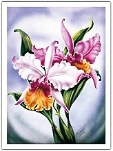 Orchidée Rose, Hawaii de Ted Mundorff c.1940s -