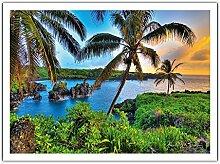 Où Da Noix De Coco Poussent - Hana, Hawaii -