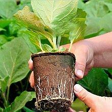 Oumefar Tasse de pépinière de Plantes Tasses de