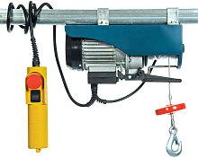 Palan électrique 125-250kg