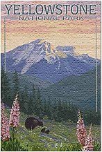 Parc national de Yellowstone - Puzzle 500 pièces
