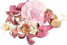 Paris Prix - Pot Pourri Essentiel 200g Orchidée