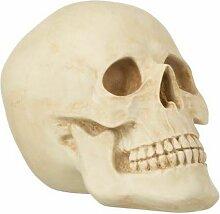 Paris Prix - Statuette Déco crâne 27cm Naturel