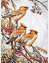Peinture Diamant Oiseau coucou animal Kit de