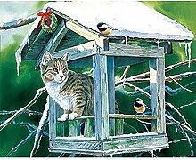 Peinture Diamant Oiseau coucou chat animal Kit de
