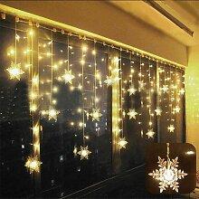 Perle rare Rideau lumière LED guirlande lumineuse