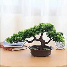 Pin Artificiel de bonsaï, Plante de bonsaï