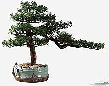 Plantes artificielles Bonsai réaliste Faux cèdre