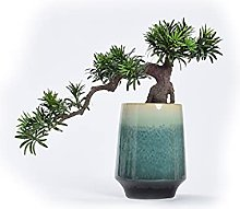 Plantes artificielles Bureau artificiel de