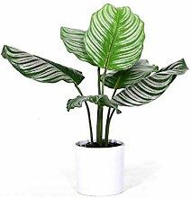 Plantes artificielles, décoration de Fausses