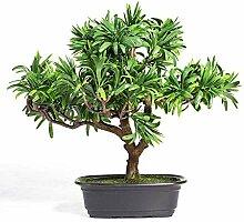 Plantes artificielles New Chinese Plante