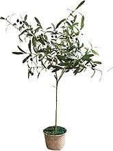 Plantes artificielles Simulation artificielle de