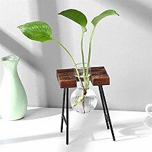 Plantes en pot Vase Vase Planteur Terrarium Table