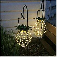 Pompe de fontaine solaire durable LED Nuit
