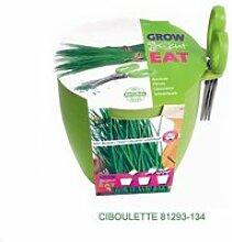 Pot aromates avec ciseaux : kit ciboulette