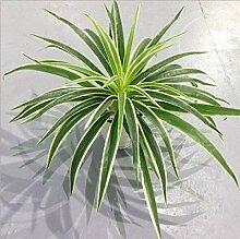 Pot de fleur Les plantes en plastique artificielle
