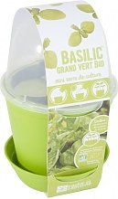 Pot en zinc et kit de plantation Basilic Bio Radis