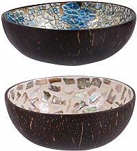 PRETYZOOM Lot de 2 bols décoratifs en noix de