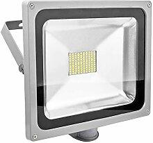 PrimLight 80W Projecteur LED Détecteur de