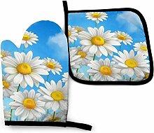 Printemps Daisy Fleurs Forêt Neige Et Parapluie
