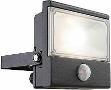 Projecteur à LED de 10 watts avec détecteur de