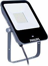 Projecteur d'éclairage LED BVP154 LED