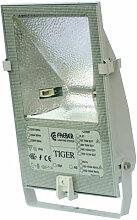 Projecteur Exterieur 70W Tiger Asymetrique